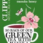 Fairtrade Green Tea with Manuka Honey from Clipper