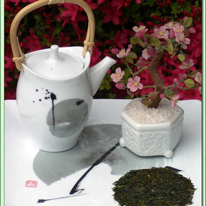 Tsumi Sencha Green Tea from Green Tea Lovers