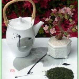Shizuoka Shincha from Green Tea Lovers