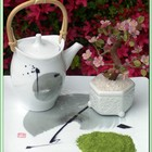 Kenya Rhino Matcha White Tea from Green Tea Lovers