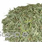 Lemongrass from Supple Skin Boutique
