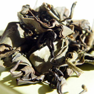 Hawaii Mauka Oolong from Chi of Tea