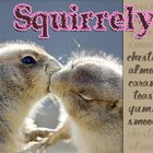 Squirrely from Adagio Teas