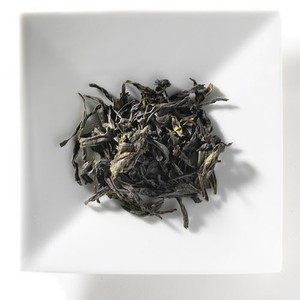 Phoenix Bird Select from Mighty Leaf Tea