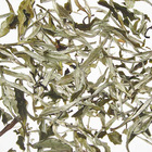 Namring Upper White Tea 2010 from Golden Tips