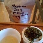 First Flush 2009 Darjeeling Glenburn estate from Postcard Teas