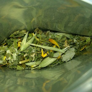 Vermont Certified Organic Rejuvenation from The Meaning of Tea