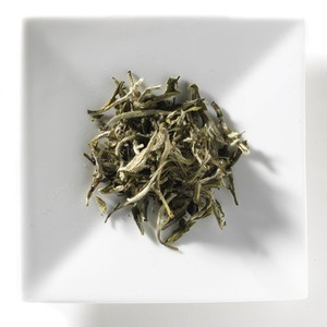 Silver Needle from Mighty Leaf Tea