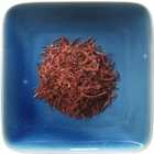 Vanilla Red Tea (Rooibos) from Stash Tea Company