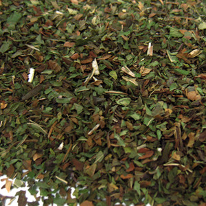 Peppermint from Fusion Teas