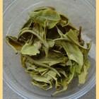 Early Spring 2011 &quot;Yunnan Bi Luo Chun&quot; Green tea from Yunnan Sourcing