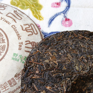 Stone-Pressed 2004 Yiwu Wild Arbor Sheng from Verdant Tea