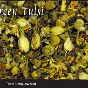 Jasmine Green Tulsi from Shanti Tea