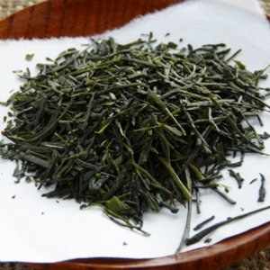 Sencha from Fuji, Shizuoka, Inzatsu 131 cultivar from Thes du Japon