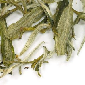 Snowbud from Adagio Teas