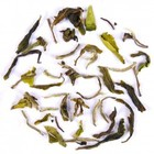 2011 Darjeeling First Flush Thurbo White Delight from DarjeelingTeaXpress