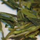 Dragonwell Style Laoshan Green from Verdant Tea