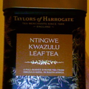 Ntingwe Kwazulu from Taylors of Harrogate