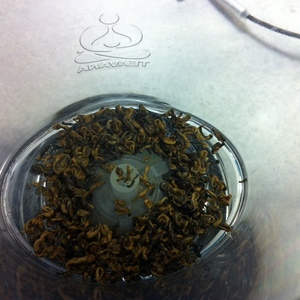 Golden Bi Lo from Golden Moon Tea