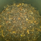Puttabong Estate Darjeeling from Tealuxe