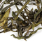 Green Anji from Adagio Teas