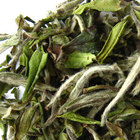 Bai Mu Dan from Camellia Sinensis