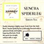 Spiderleg Sencha from Xanadu Fine Teas