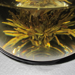 Flowering Teas - White Tea with Peach from Primula Tea