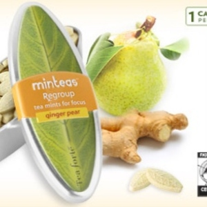 Ginger Pear (Regroup) Mintea from Tea Forte