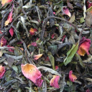 Fujian White Rose from The Tea Emporium