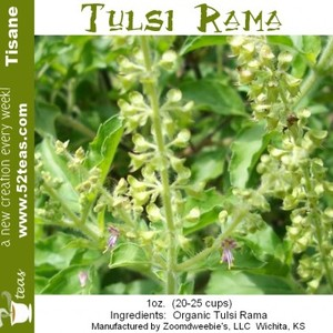 Tulsi Rama from 52teas