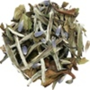 Lavender White Tea from Lupicia