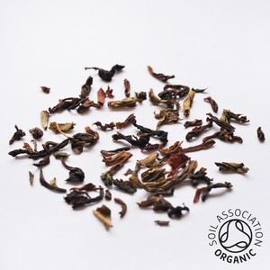 Organic Everyday Arya Darjeeling from Canton Tea Co