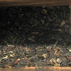 Darjeeling Sunshine Earl Grey from Say Tea