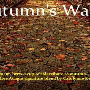 Autumn's Walk from Custom-Adagio Teas