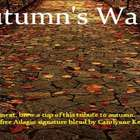 Autumn&#x27;s Walk from Custom-Adagio Teas