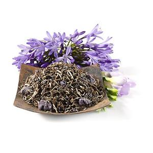Lavender Dreams from Teavana