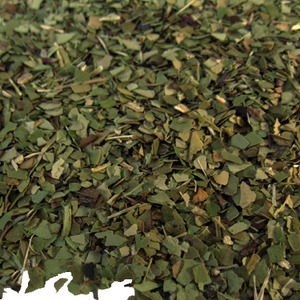 Green Yerba Mate from Fusion Teas