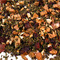 Tropical Tulsi from Fusion Teas