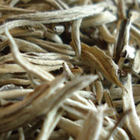 Silver Needle No. 1 from Tea Desire