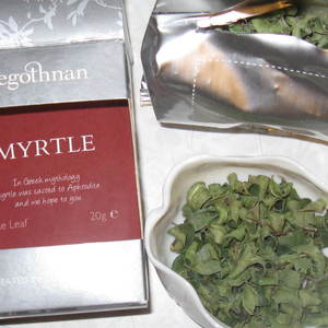 myrtle from Tregothnan
