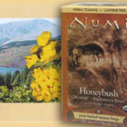 Bushmen's Brew Honeybush from Numi Organic Tea