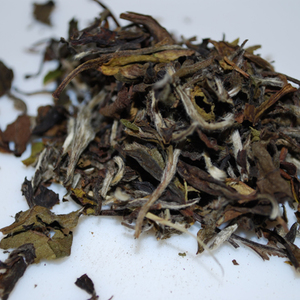 Shoumei White Tea from Mystery Tea House