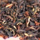 2011 Darjeeling Autumn Flush Gopaldhara Thunder Tea from DarjeelingTeaXpress
