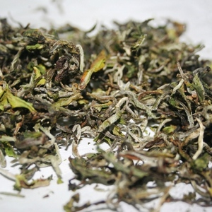 Puttabong Organic Moondrops/1st flush 2012 from Tea Emporium