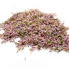 Heather Flower from ESGREEN