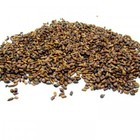 Cassia Seed from ESGREEN
