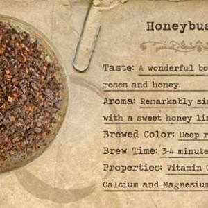 Honeybush Tea from Mountain Rose Herbs