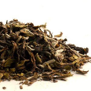 2012 Darjeeling First Flush Thurbo White Delight from 深蒸し茶