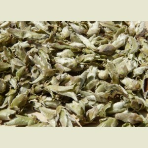 "EARLY SPRING 2012 ""SUN-DRIED BUDS"" WILD PU-ERH TEA VARIETAL from Yunnan Sourcing"